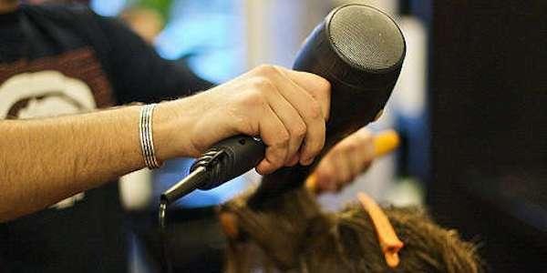 Francia, sentenza shock: insultare gay non è discriminazione se fai il parrucchiere