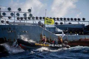 """Greenpeace contro colosso tailandese Thai Union: """"Stop alla pesca distruttiva"""""""