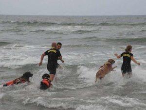 Roma, due cani bagnino salvano padre e figlia dall'annegamento