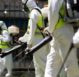 Virus Zika: le raccomandazioni delle autorità sanitarie americane alle donne incinte