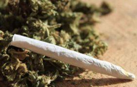 """Legame """"cannabis e schizofrenia"""": secondo gli scienziati aumenta il rischio per chi ne fa uso"""
