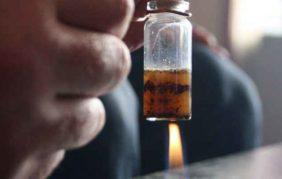 Krokodil, nuova emergenza in Italia per la droga rossa a basso costo dagli effetti devastanti