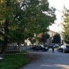 Parma, accoltella la moglie e scappa: trovato privo di vita sotto a un albero