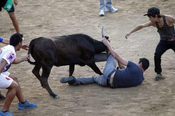 Messico, incornato e scaraventato su un albero da un toro
