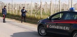 """Mafia: inchiesta """"Triokola"""", scoperti incontri tra boss nelle campagne agrigentine"""