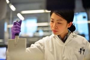 Ricerca staminali: successo in Giappone, creata pelle con peli e ghiandole sebacee