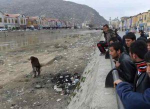Afghanistan, 15enne arsa viva dalla cognata nel forno domestico: mistero il motivo