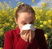 Come prevenire le allergie primaverili, tutti i consigli